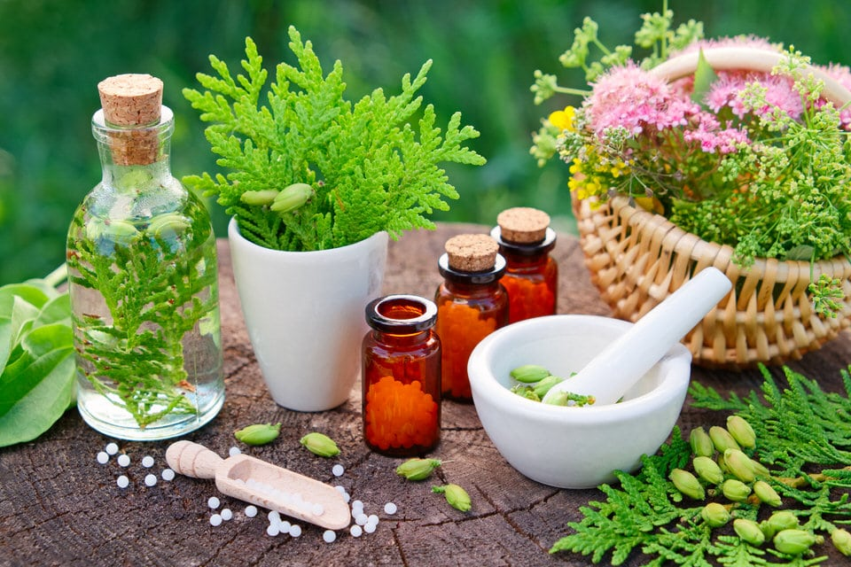 Naturotherapy: Natural Self Healing Practices